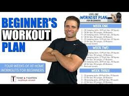 total body workout plan to lose weight