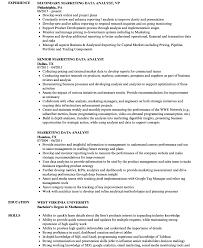 Data Analyst Resume Example Resume Template Data Analyst Inspirational Big Sample Health Of 55