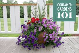 Container Garden Design Simple Design Ideas