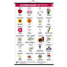 flower design roller wall chart 15 20