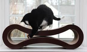 cat scratcher lounge. $35 For A PetFusion Cat Scratcher Lounge