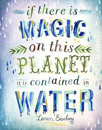 Water Quotes Amazing Inspirational Quotes On Water Conservation New Water Quotes Unique