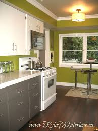 Green And Grey Kitchen Cabinet Green Grey Kitchen Cabinet