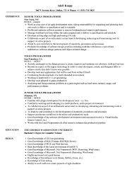 Programmer Resume Sample Tools Programmer Resume Samples Velvet Jobs 88