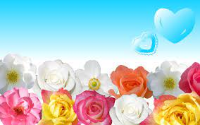 Flower Power Wallpapers - Top Free ...