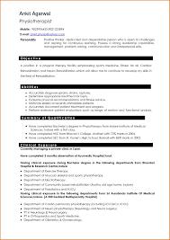 Professional Resume Writers Professional Resume Help Resume Writers U100 100 Yralaska 17