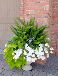 Best 25 Recycled Planters Ideas On Pinterest  Planters Shade Container Garden Ideas Pinterest