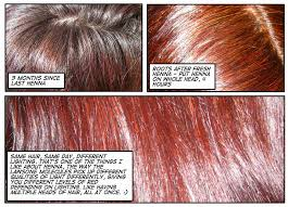 Pure Henna Powder Hair Color Reviews Photos Ingredients