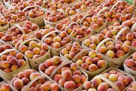 Nc Seasonal Produce Chart North Carolina Seasonal Fruits And Vegetables