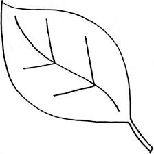Image Result For Free Outline Line Clipart Of Leaves Leaves Leaf