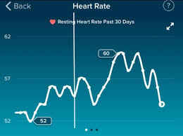 Fitbit Resting Heart Rate Chart Update Fitbit Resting Heart Rate Predict Bfp Getting