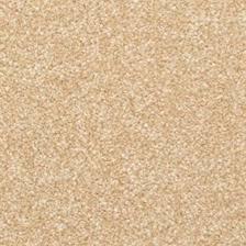 tan carpet floor. Divinity \u003cspan\u003e- Camelite\u003c\/span\u003e Tan Carpet Floor