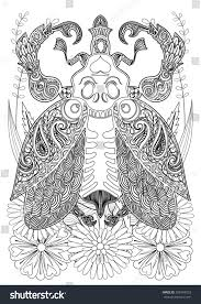Zentangle Stylized Bug On Grass Flowers Stock Illustration 508454203