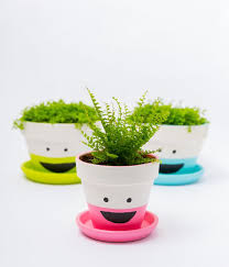 gallery of 15 diy painted plant pots can create your hobbies