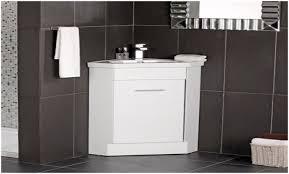 Ikea Corner Bathroom Cabinet Bathroom Corner Bathroom Medicine Cabinets With Mirrors Bathroom