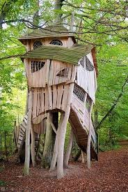 Tree House Architecture 1458 Best Tree House Images On Pinterest Treehouses