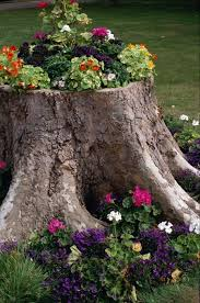 Image result for creative garden ideas