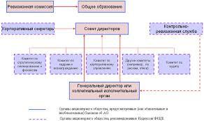 ЭУП Рис 1 Обязательные и необязательные органы акционерного общества