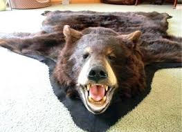 faux bear skin rug with head terrific rugs without for nursery