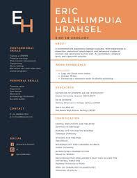 Biodata Resume Professional Resume Cv Biodata Writing And Designing For Inr