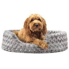 dog bed with removable cover. Plain With Archie U0026 Oscar Ernie Ultra Plush Oval Pet Bed With Removable Cover  Reviews  Wayfair And Dog With G
