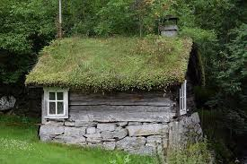 garden hut. This Garden Hut Shed Is Practically Growing Into The Scenery. Sheer Nature, As Depicted By Off Roof Of Structure.