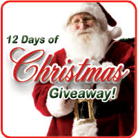 12 Days of Christmas Giveaway: Day One - RecipeChatter