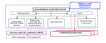 Audit Structure Chart The Organizational Structure Of The Internal Audit