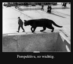 Perspektive So Wichtig Lustige Bilder Sprüche Witze Echt Lustig