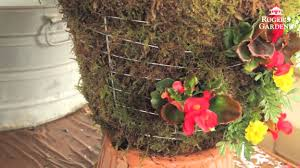 how to make a moss hanging garden basket with lisa