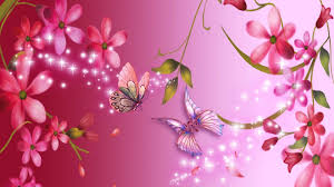 1920x1080 pink flower wallpapers 1080p 0 res 1920x1200