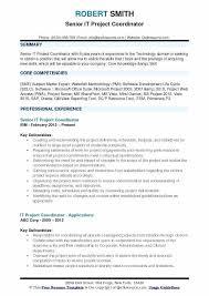 Project Coordinator Resume Hotwiresite Com