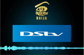 Download and install the dstv now for pc windows 10/8/7/xp or even on mac desktop or laptop computers. How To Download Dstv Now App For Big Brother Naija 2019 On Android And Ios Bbnaija 2021
