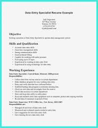 Job Description For Data Entry For Resume Data Entry Job Description For Resume Pdf Format Business Document 2