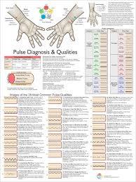 71 Veritable Tcm Tongue Diagnosis Chart