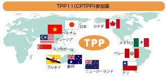 Tpp と は