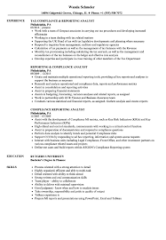 Compliance Analyst Resume Interesting Compliance Reporting Analyst Resume Samples Velvet Jobs