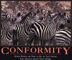 Conformity Quotes Cool Funny Quote Pictures Test What Is Conformity