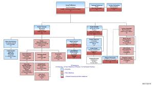 The Organization Chart Organization Chart Penn Audit Compliance And Privacy
