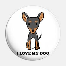 Manchester Terrier Size Chart I Love My Dog