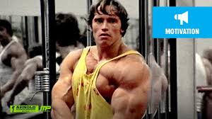 Arnold Gym Workout Chart Gym Workout Plans Best Bodybuilder Of All Time Arnold