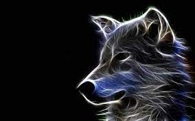 Cool HD Wallpapers Wolf #Cool #HD ...