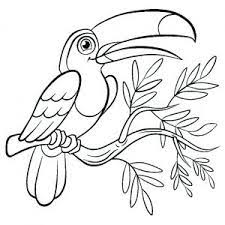 Birds coloring pages are very popular with kids of all ages. Birds Free Printable Coloring Pages For Kids
