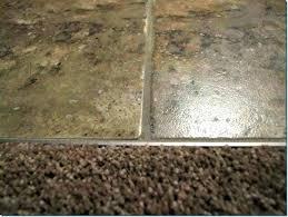 tile to concrete transition strip carpet to tile transition strip gorgeous carpet to tile carpet to