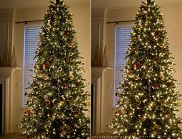 Photographing Christmas Tree Lights How To Photograph A Christmas Tree Colorvale