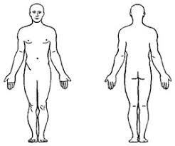 Body Injury Chart Help My Child Came Home With Bite Marks Autism Parenting