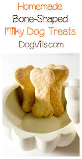 your dog will love