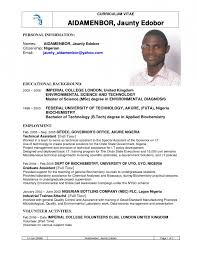 Latest Cv Format In Nigeria Resume Template Example