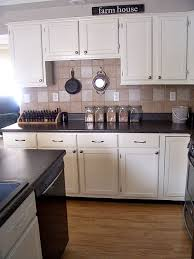 Professional Painting Kitchen Cabinets Extraordinary How To Paint Your Kitchen Cabinets The Prairie Homestead