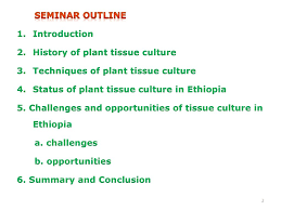 Tissue Culture Flow Chart The Status Of Plant Tissue Culture In Ethiopia Seminar Ii